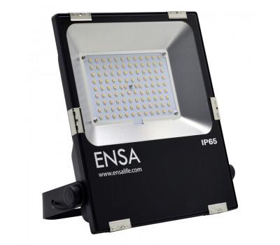 Professional 50W LED Flood Light (5000K) | ENSA  | LFL-B50-C